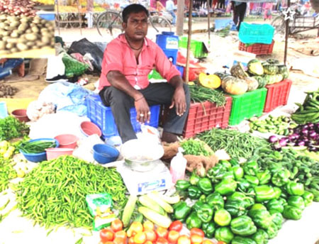 Vegetables in IDPL Colony, Rishikesh, Dehradun, Uttarakhand, India